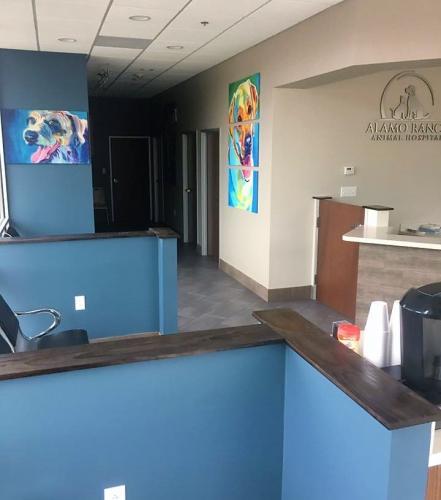 Front-Desk-Alamo-Ranch-Vets